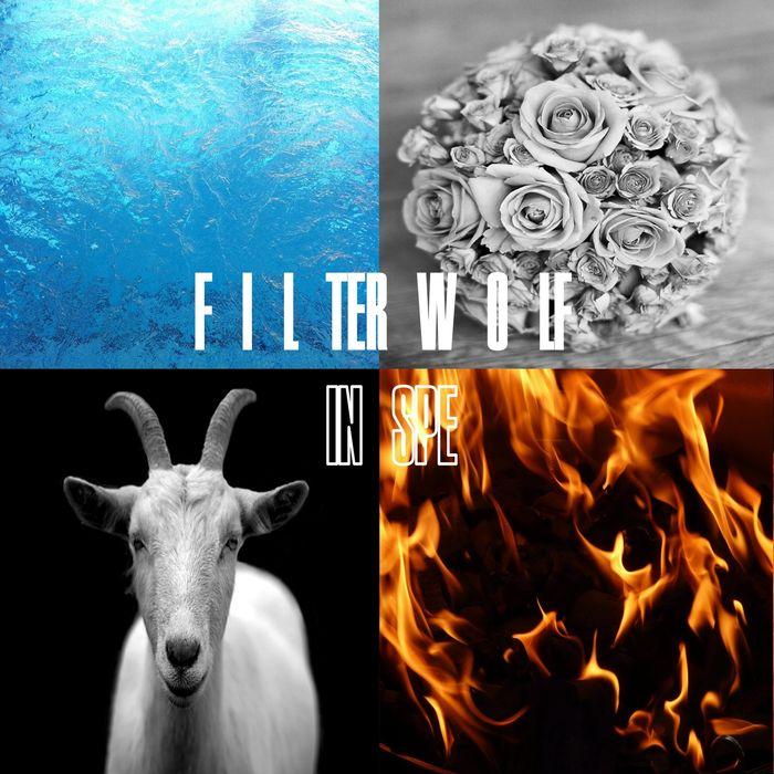 FILTERWOLF - In Spe