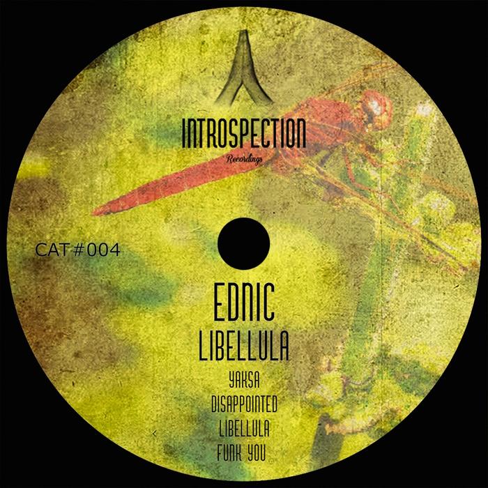 EDNIC - Libellula