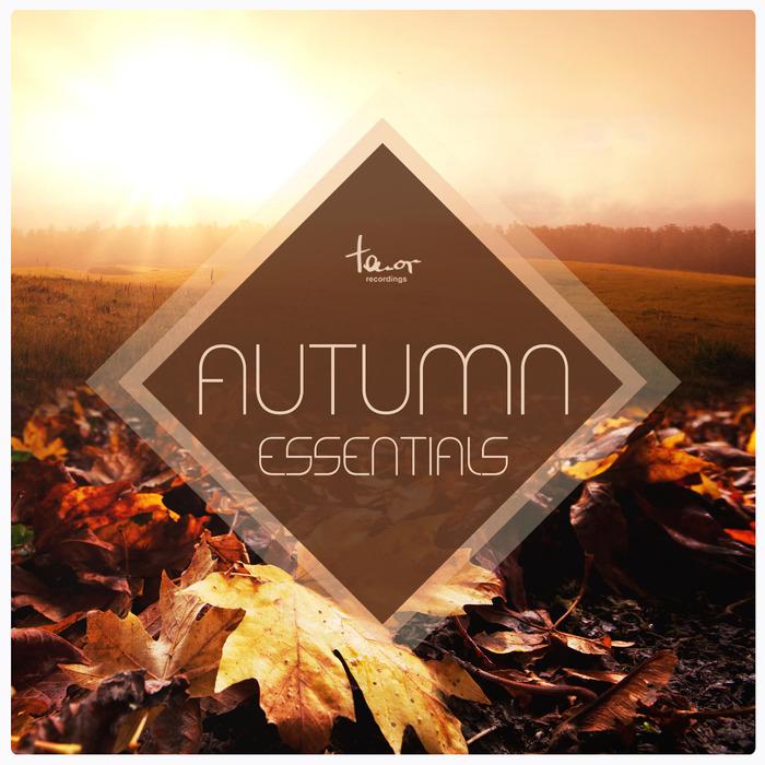 VARIOUS - Autumn Essentials