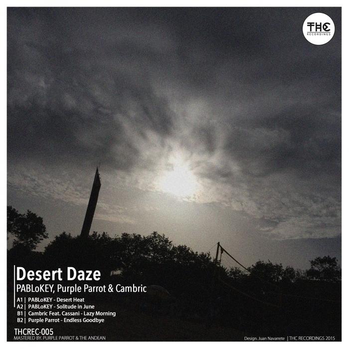 PURPLE PARROT PABLOKEY & CAMBRIC - Desert Daze EP