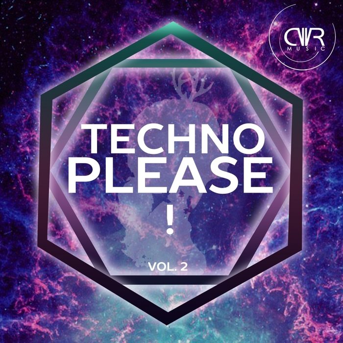 VARIOUS - Techno Please! Vol 2