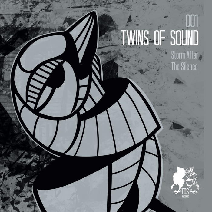 TWINS OF SOUND - Storm After The Silence
