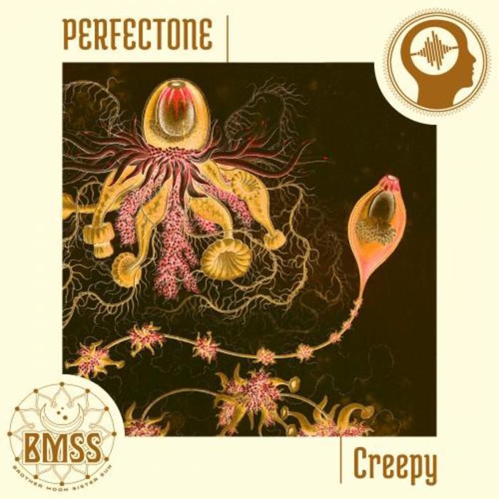 PERFECTONE - Creepy