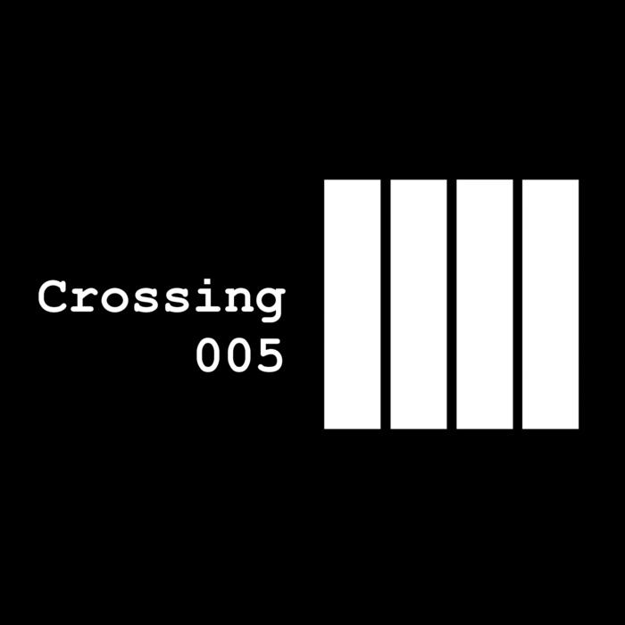 AVION - Crossing 005