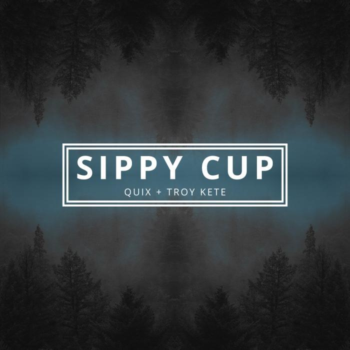 QUIX - Sippy Cup
