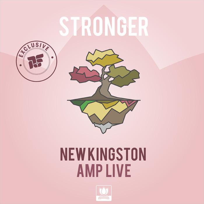 AMP LIVE/NEW KINGSTON - Stronger
