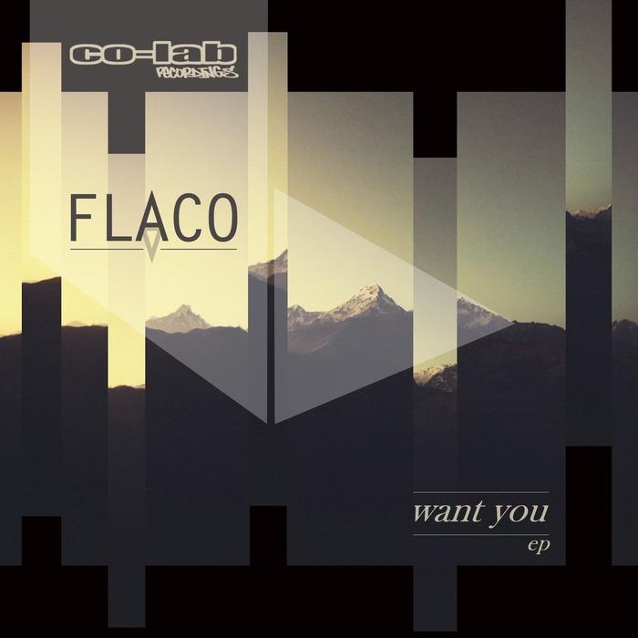 FLACO - Want You EP
