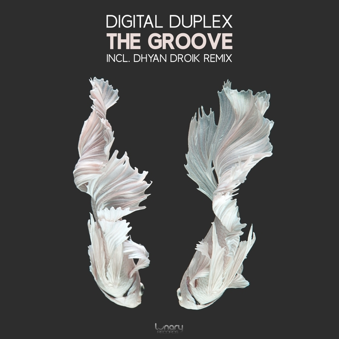 DIGITAL DUPLEX - The Groove