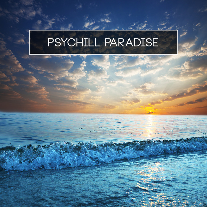 VARIOUS - Psychill Paradise