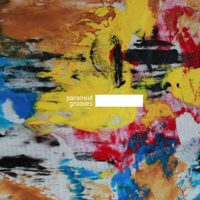 VARIOUS - Paranoid Grooves 05