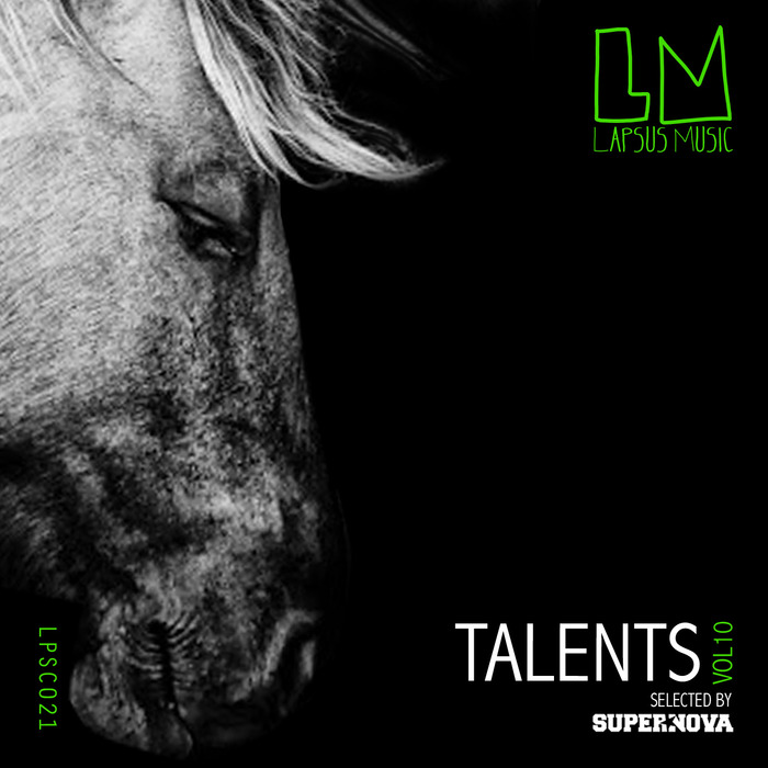 VARIOUS - Talents Vol 10