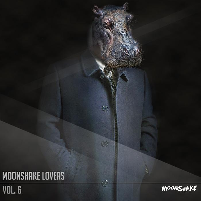 VARIOUS - Moonshake Lovers Vol 6