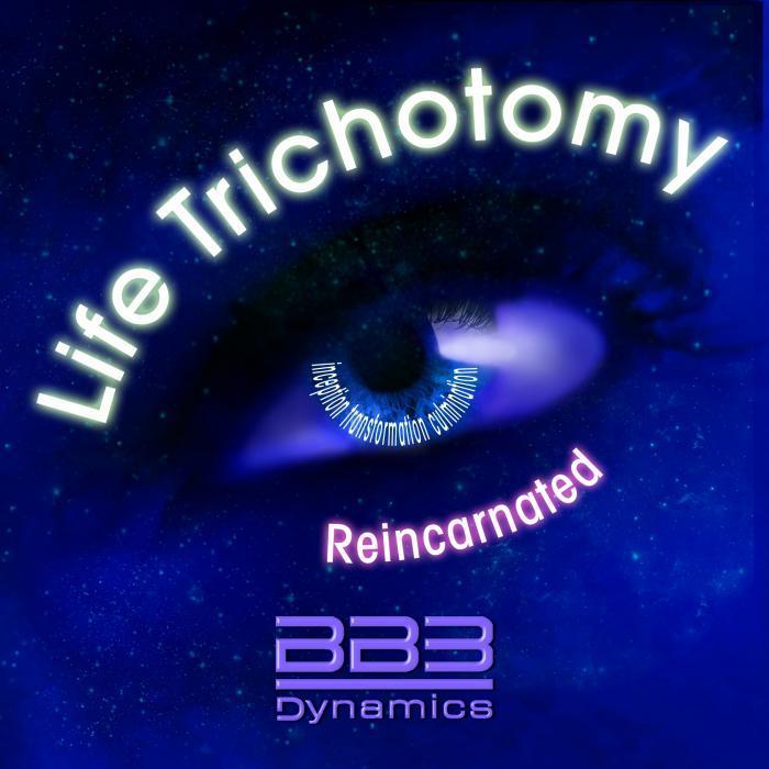 BB3 DYNAMICS - Life Trichotomy Reincarnated EP