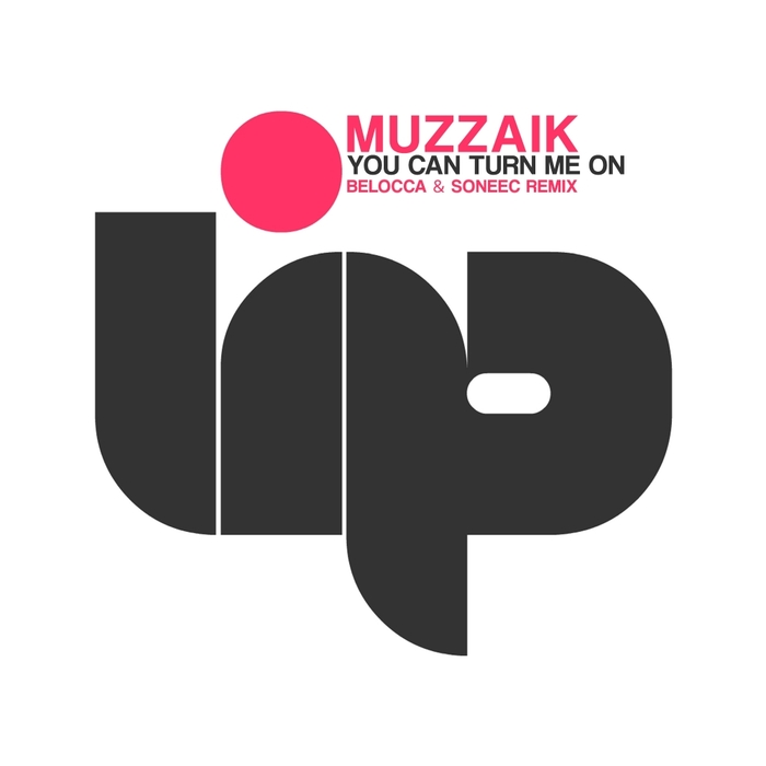 MUZZAIK - You Can Turn Me On