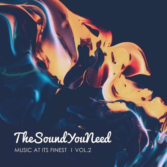 VARIOUS - TheSoundYouNeed Vol 2 (unmixed Tracks)