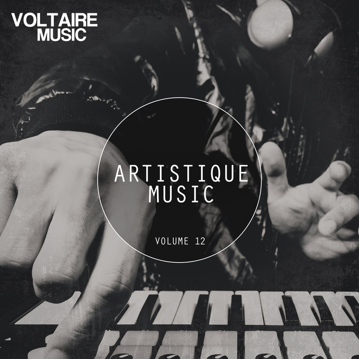 VARIOUS - Artistique Music Vol 12