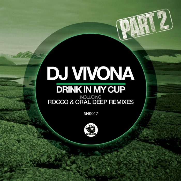 DJ VIVONA - Drink In My Cup Pt 2