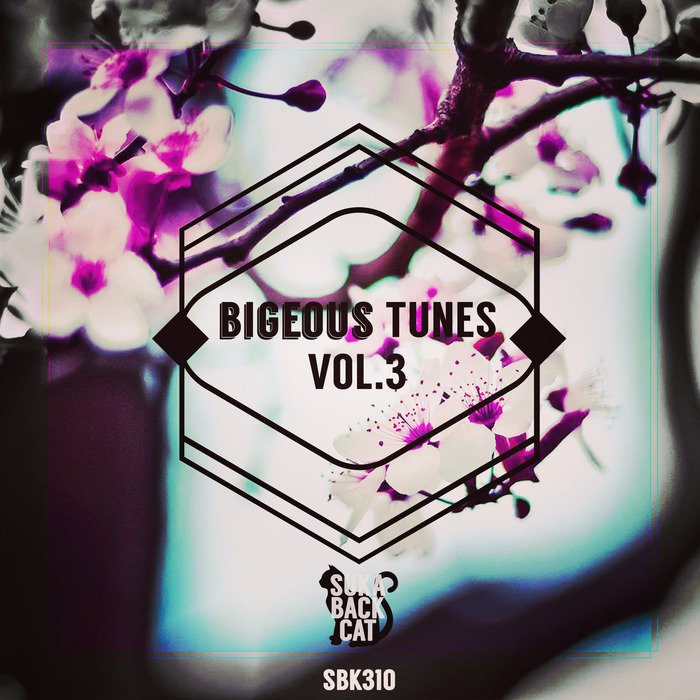 VARIOUS - Bigeous Tunes Vol 3