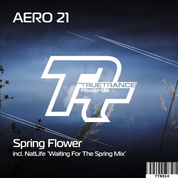 AERO 21 - Spring Flower