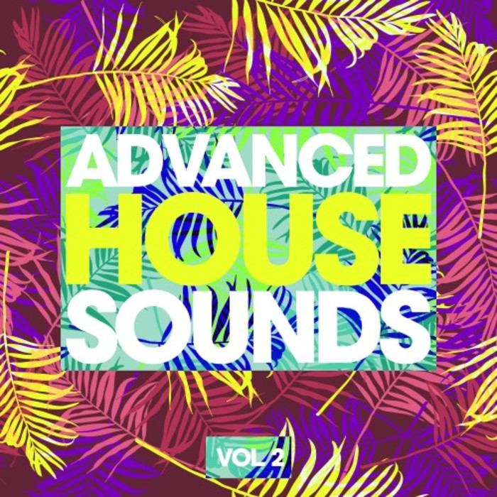 VARIOUS - Advanced House Sounds Vol 2