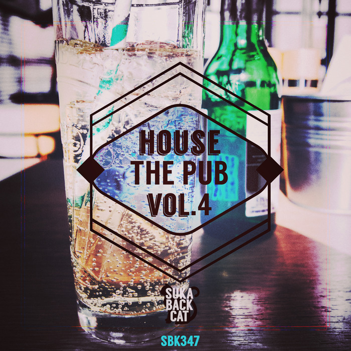VARIOUS/NIKO DE LUKA/THE DEEP PROJECT ONE - House The Pub Vol 4