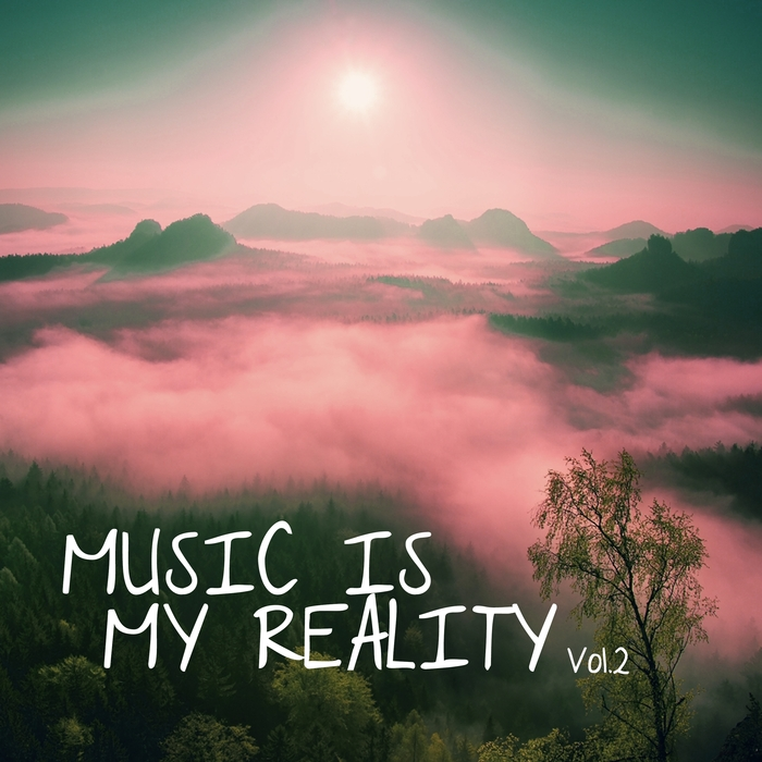 VARIOUS - Music Is My Reality Vol 2