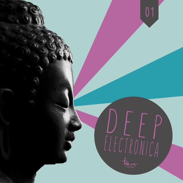 VARIOUS - Deep Electronica Vol 1