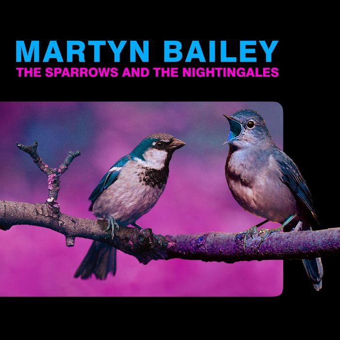MARTYN BAILEY - The Sparrows & The Nightingales