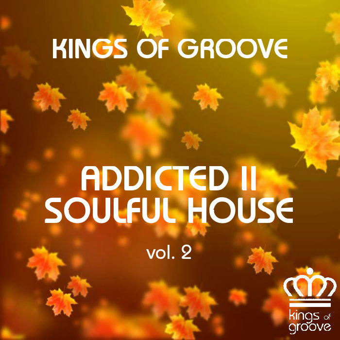 VARIOUS - Addicted Ii Soulful House Vol 2