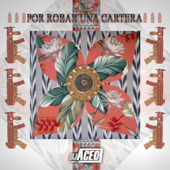 DJ ACECE - Por Robar Una Cartera