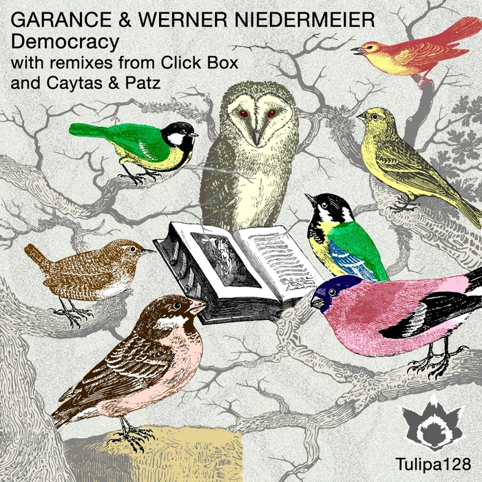 GARANCE/WERNER NIEDERMEIER - Democracy