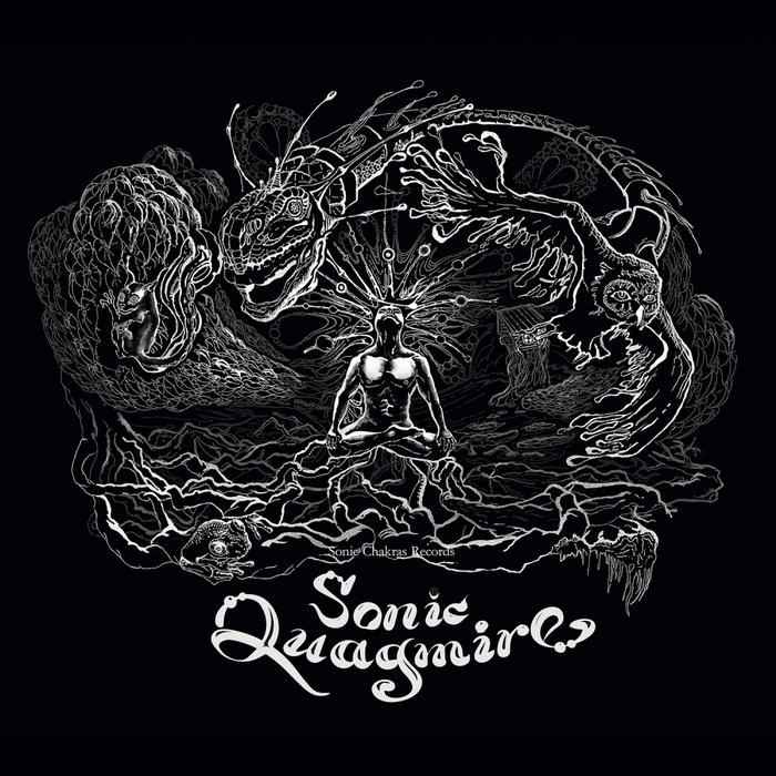 VARIOUS - Sonic Quagmire