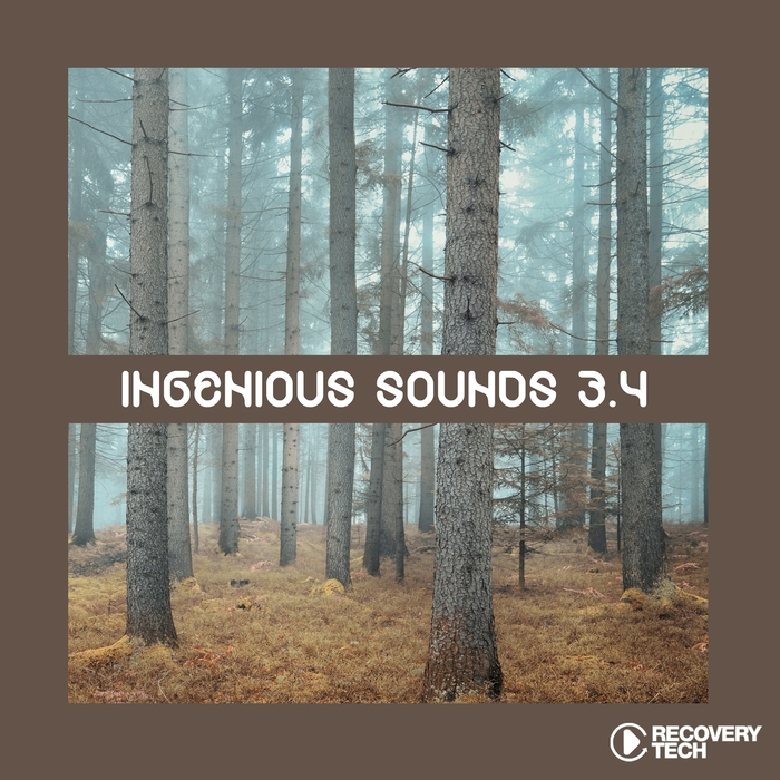 VARIOUS - Ingenious Sounds Vol 3.4