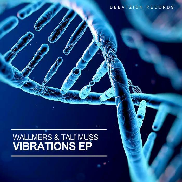 WALLMERS/TALI MUSS - Vibrations EP