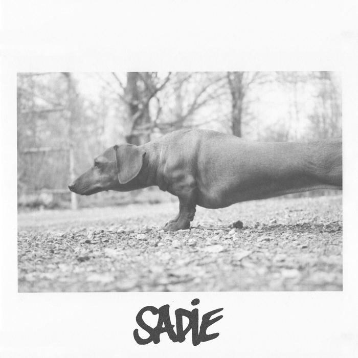 PHOTAY - Sadie