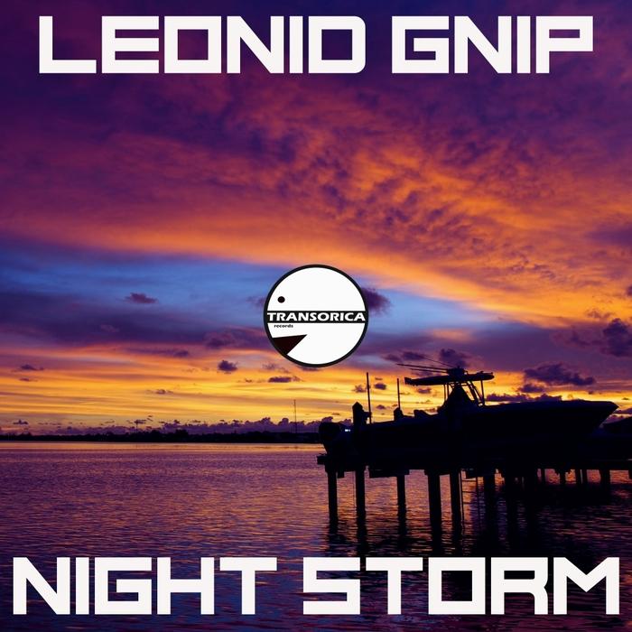 LEONID GNIP - Night Storm