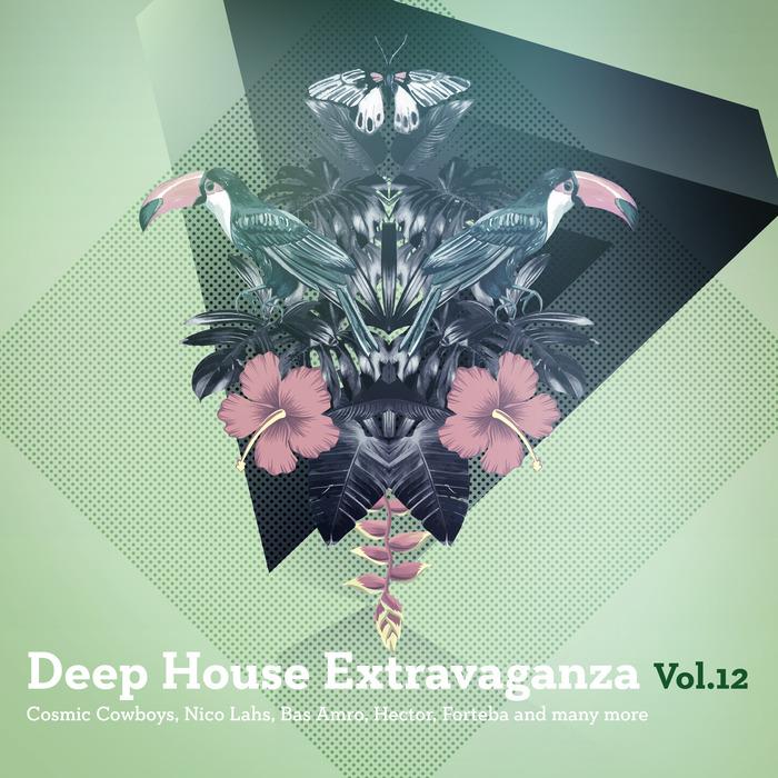 VARIOUS - Deep House Extravaganza Vol  12