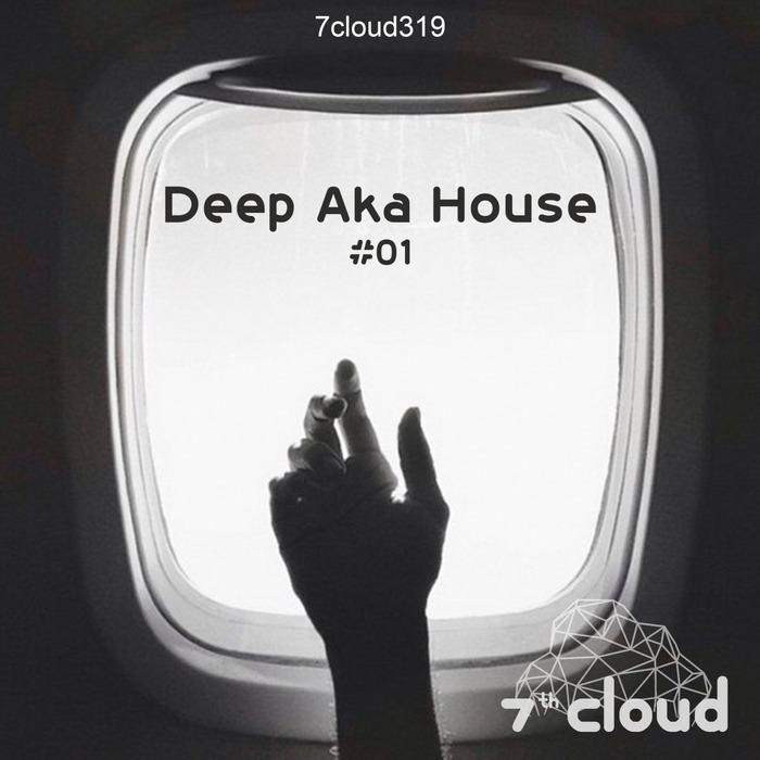 VARIOUS - Deep Aka House #01