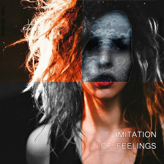 RUSLANIO TARR/ILEANA VILLASMIL - Limitation Of Feelings