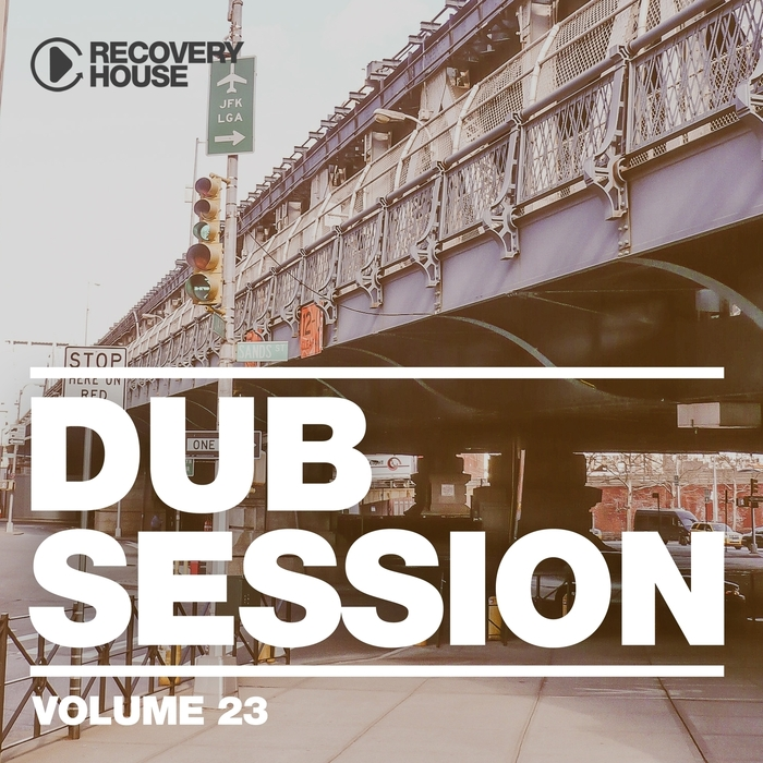 VARIOUS - Dub Session Vol 23