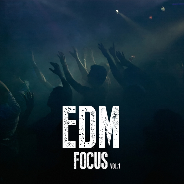 VARIOUS - EDM Focus Vol 1
