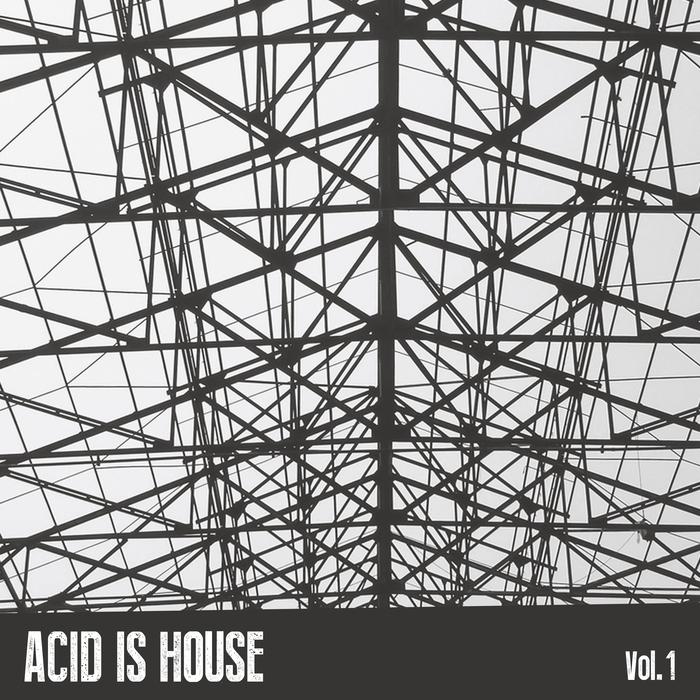 VARIOUS - Acid Is House Vol 1