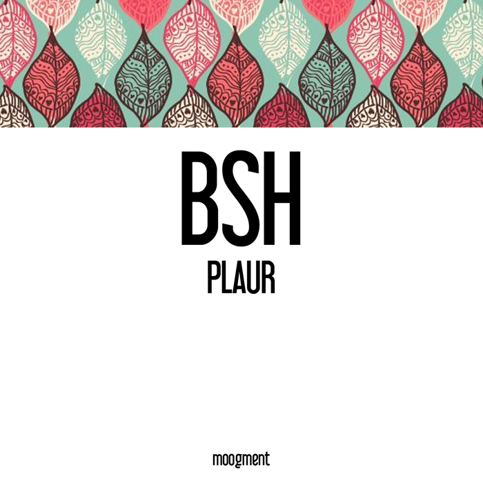 BSH - Plaur
