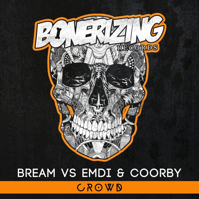 BREAM vs EMDI/COORBY - Crowd