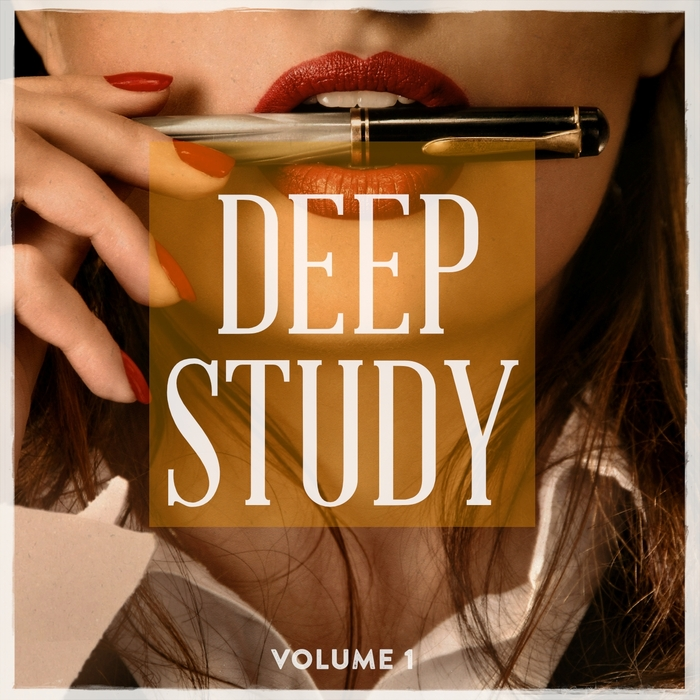 VARIOUS - Deep Study Vol 1 (Focus With This Awesome House Tracks)
