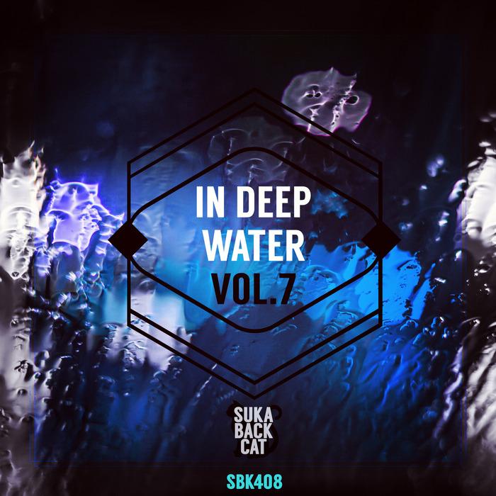 VARIOUS - In Deep Water Vol 7