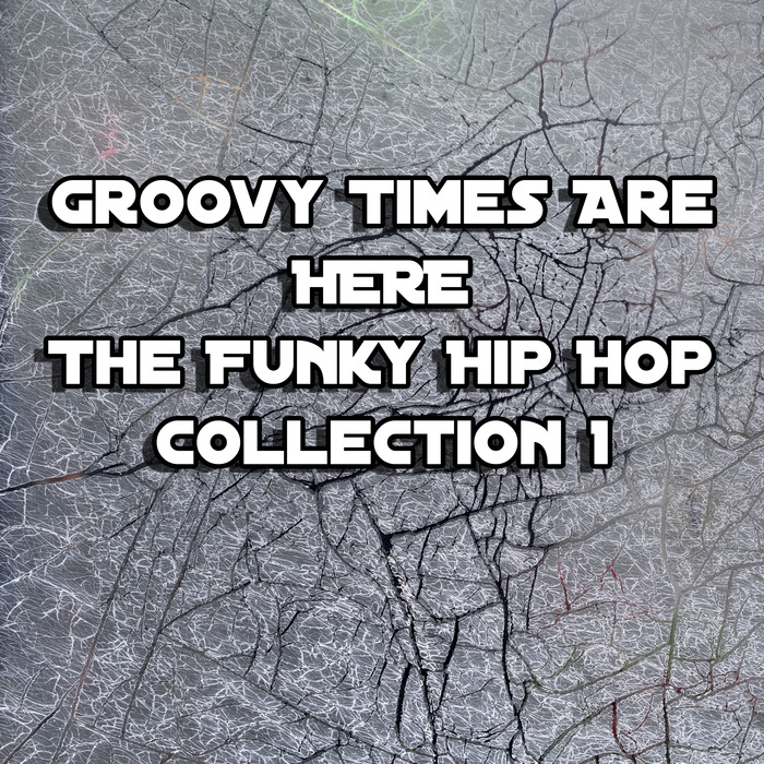 DJ DIZZY COMMON SENSE/THE FREESTYLE BEATS - Groovy Times Are Here/The Funky Hip Hop Collection 1