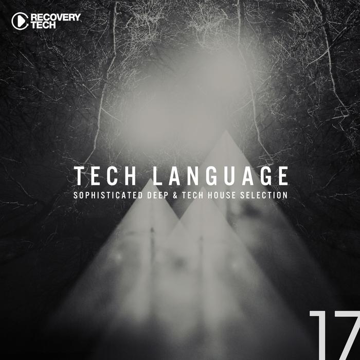 VARIOUS - Tech Language Vol 17