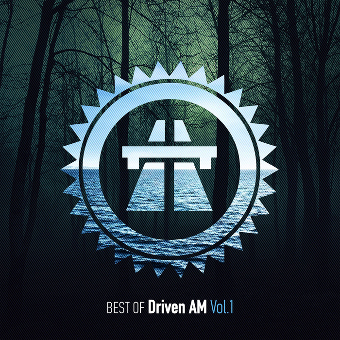 VARIOUS - Best Of Driven AM Vol 1