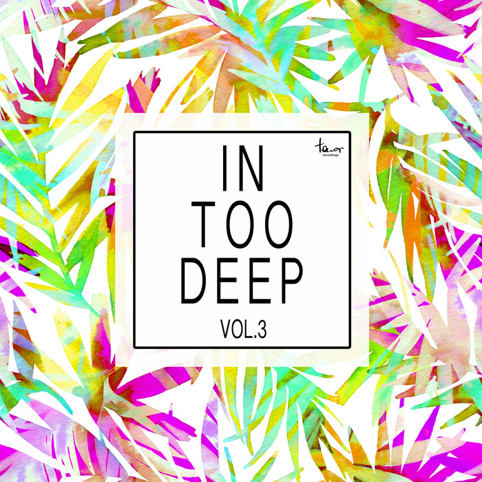 VARIOUS - In Too Deep Vol 3